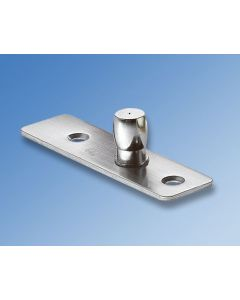 Pivot With Fixing Plate 9124