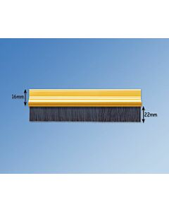 Residential Brush Strip